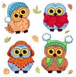 Owlets w trykotowym odziewają Zdjęcie Royalty Free