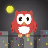 Owli στην πόλη νύχτας Στοκ Εικόνες