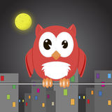 Owli w nocy mieście Obrazy Stock