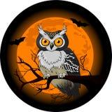 Owlnatt royaltyfri illustrationer