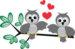 Owls. Two owls in love sitting on a branch Royalty Free Stock Photography