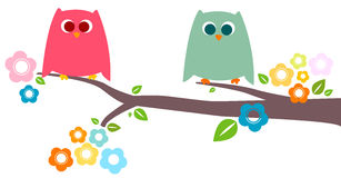Owls royalty free illustration
