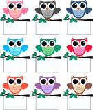 Owls. Colourful owls holding a placard Royalty Free Stock Image