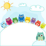Owls. Set of cut colorful owls - greeting card Royalty Free Stock Photos
