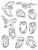 Owls. A set of silhouettes of owls with various emotions Royalty Free Stock Photo