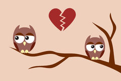 Owls after an argument. Sitting on a tree branch Royalty Free Stock Image