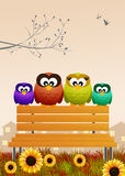 Owls on the bench Stock Image