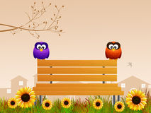 Owls on bench Royalty Free Stock Image