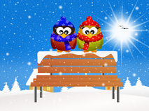 Owls on bench in winter Stock Photo