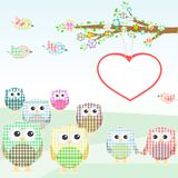 Owls and birds on tree branches. nature element