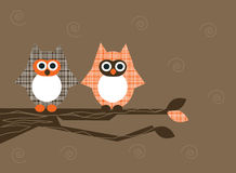Owls on branch Stock Photos