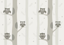 Owls on branch at day,Design for cards Stock Images