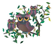 Owls on a Branch Royalty Free Stock Photography