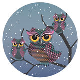 Owls on a Branch Royalty Free Stock Images