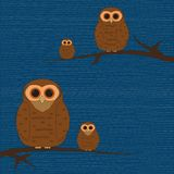 Owls on branches Stock Photos
