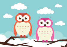 2 owls on branches Stock Photo