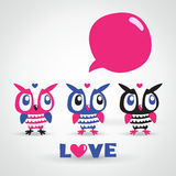 Owls cartoon greeting card. Love. Royalty Free Stock Photos