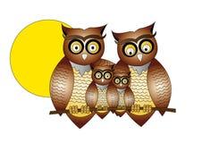Owls. Cartoon Owls  on white background Stock Photo