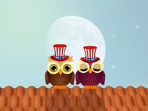 Owls celebrate Independence day Royalty Free Stock Photo