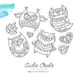 Owls for coloring Stock Photo