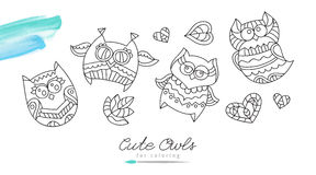 Owls for coloring Stock Photos