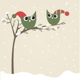Owls couple in christmas hats on the tree branch Royalty Free Stock Photography