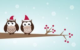 Owls couple in christmas hats on the tree branch. Royalty Free Stock Images