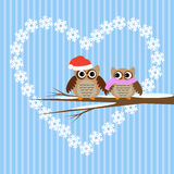 Owls couple in love Stock Image