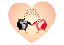 Owls couple in love Stock Images