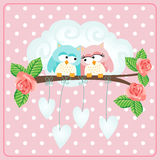 Owls couple love greeting card Stock Images