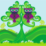 Owls couple sitting on a green tree Stock Images