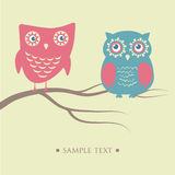Owls couple sitting on the tree branch. Stock Photos
