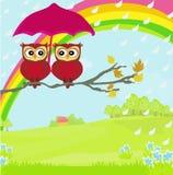 Owls couple under umbrella Stock Image