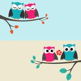 Owls_couples Photographie stock libre de droits