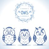 Owls cute Royalty Free Stock Image