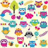 Owls and elements clip art set Royalty Free Stock Photography