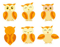 Owls expressions Stock Images