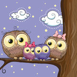 Owls family. Four owls mother, father, son and daughter is sitting on a branch Stock Photography