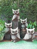 Owls Family in Garden. Five Owls in Garden Stock Photography