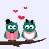 Owls. Flat design sweet owls in love Stock Photos