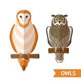 Owls Front Set Stock Photos