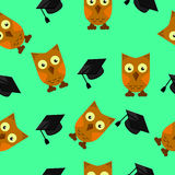Owls with graduates caps, green background Stock Image