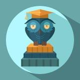 Owls in graduation cap Stock Image