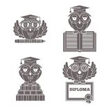 Owls in graduation caps set Stock Images