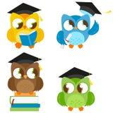 Owls with graduation hats education set Royalty Free Stock Photo