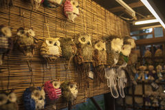 Owls in grocery store, China. Owls in grocery store in Chengdu, Sichuan, China Stock Photo