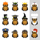 Owls with hat, helmet, cap, bandanna and crown Royalty Free Stock Photo