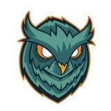 Owls head mascot Stock Images