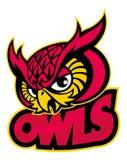 Owls head mascot. Vector of owls head mascot Royalty Free Stock Image