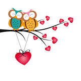 Owls and hearts Stock Image
